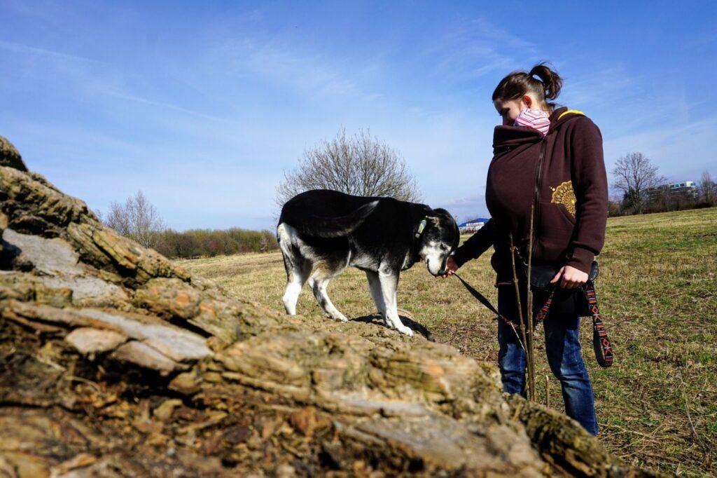 Ergonomické nosítko a nošení dětí je praktické i na venčení psa.
