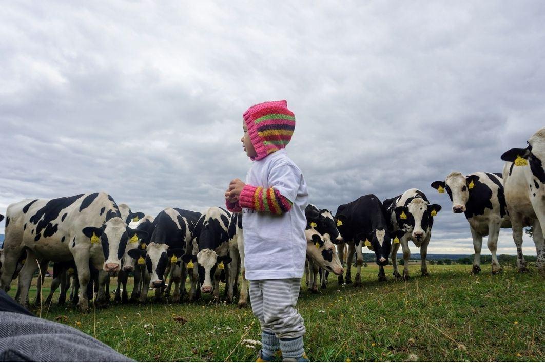 Vegan těhotenství a veganství u dětí.